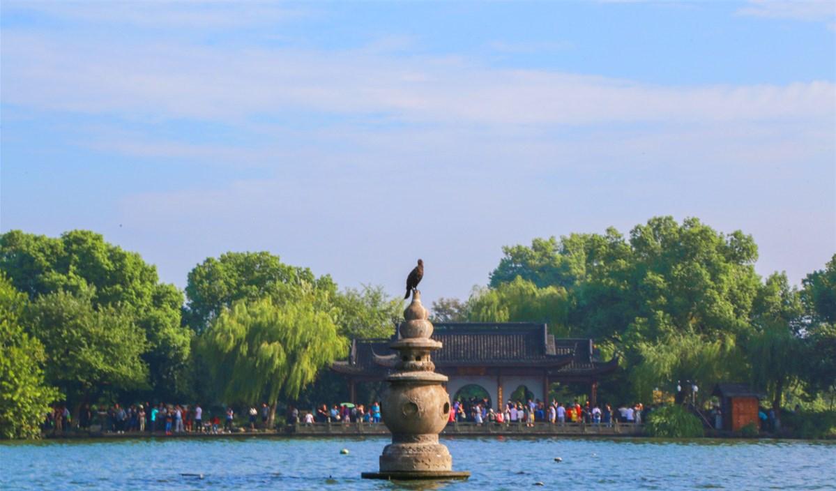 扬州瘦西湖、千垛油菜花、无锡、苏州、杭州、上海双飞六日游(全陪团)