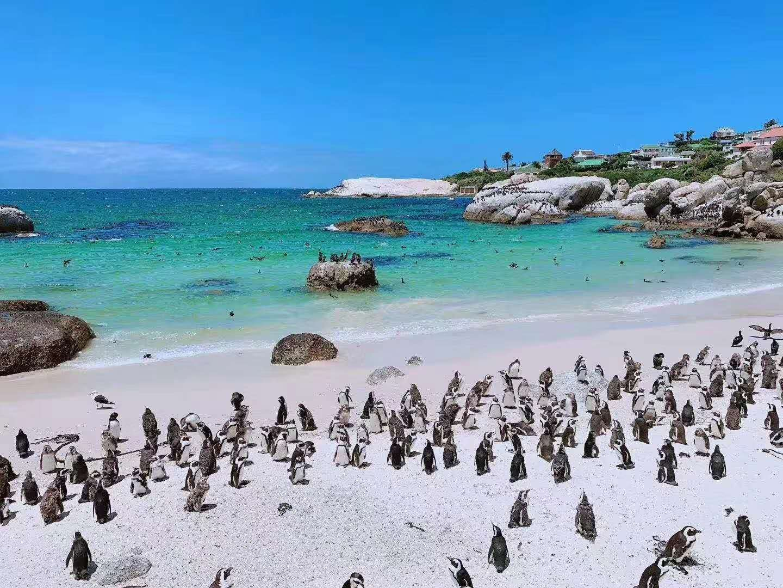 一价全含—海陆空总动员—南非悦享之旅8日