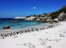 爵士南非-五星花园大道追逐动物10天之旅