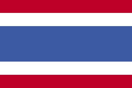 泰国电子签15天