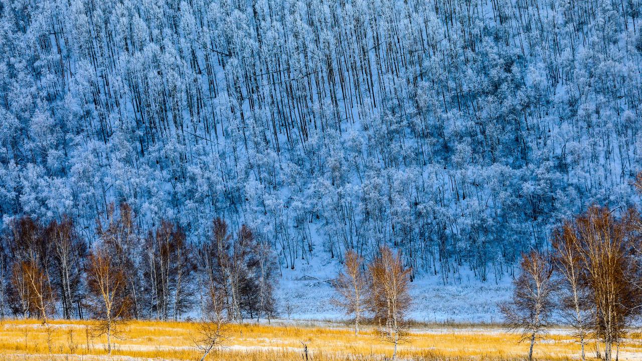 阿尔山国家森林公园、白狼民俗村、亲爱的客栈、阿尔山雪村、冰雪乐园 四飞六日游