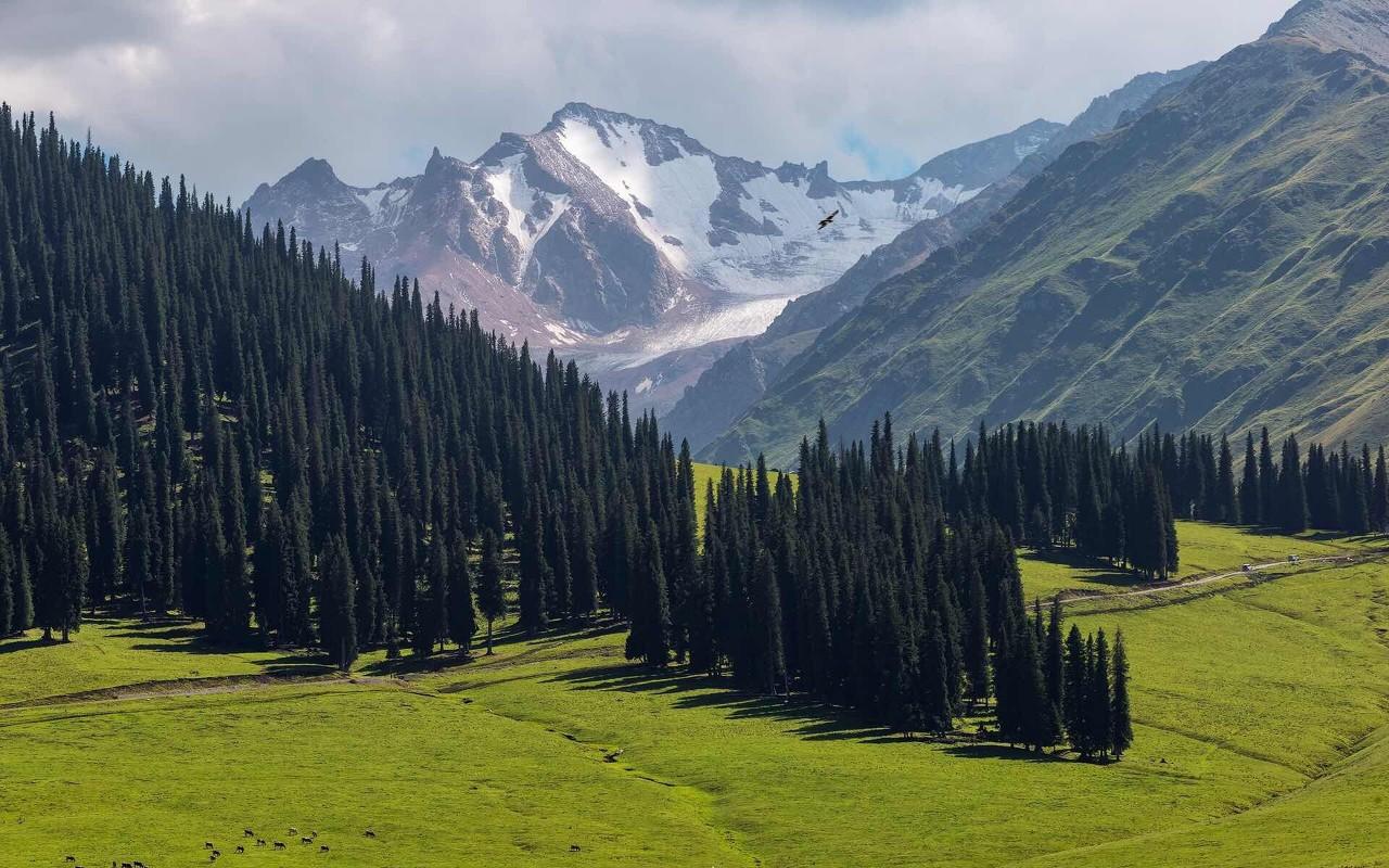 乌鲁木齐、天山天池、喀纳斯、布尔津、吐鲁番、火焰山双飞八日游
