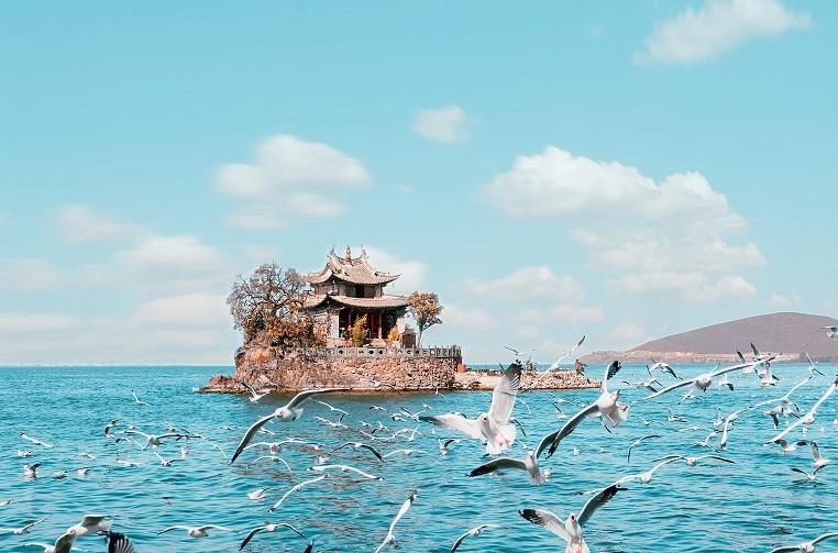 昆明、湖南韶山、丽江、版纳、贵州、大理旅游专列12日游